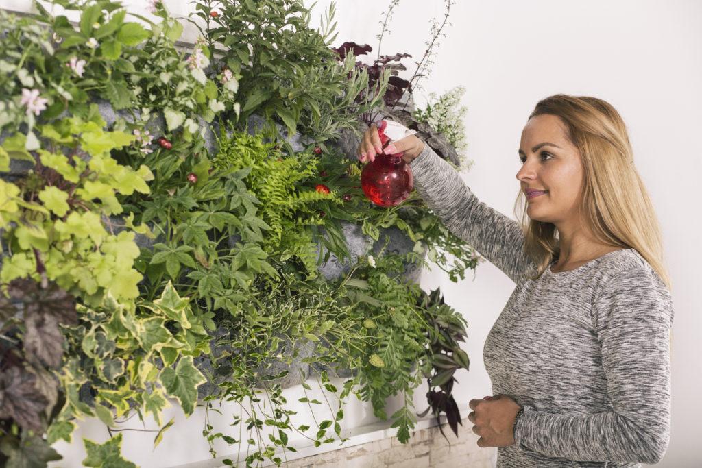 vertical garden growing tips trico homes
