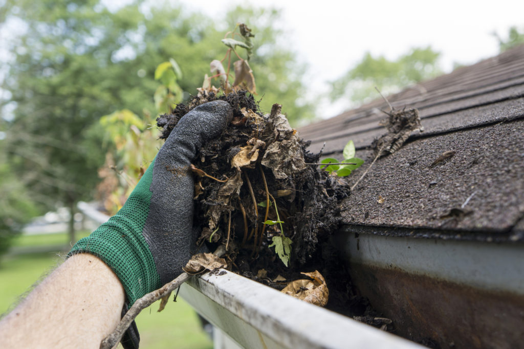 Clean Your Gutters, 12 Home Maintenance & Repairs You Can Do Yourself